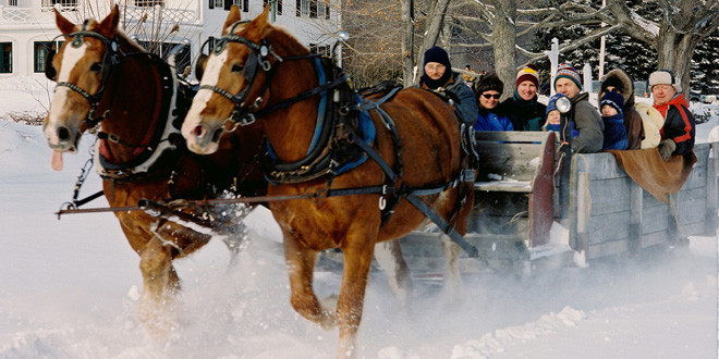Happy Holidays and Sleigh Ride